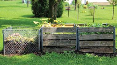 Compost: The gardener's black gold