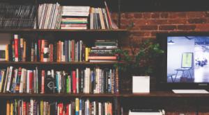 bibliotheque rangement mur brique appartement kangalou