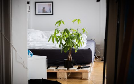 Top 10 de nos appartements coup de cœur