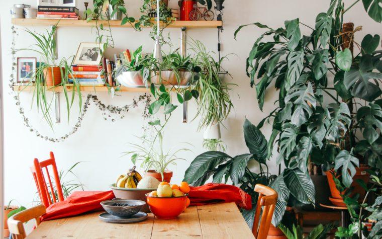 Six astuces pour apprécier davantage ton nouvel appartement