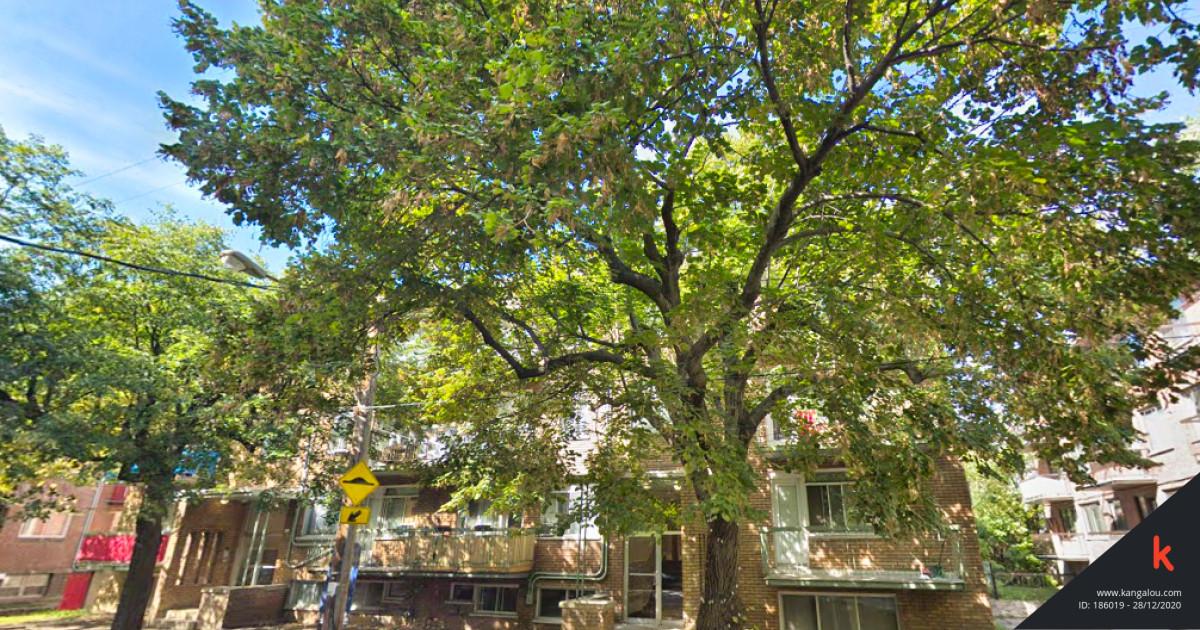 Appartement à louer - 2 ½ Montréal 2705 Bedford #15   Kangalou