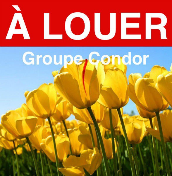 Groupe Condor inc